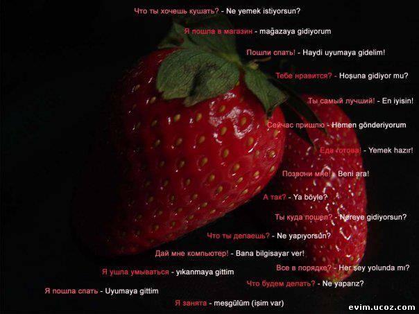 http://evim.ucoz.com/_fr/31/8124532.jpg